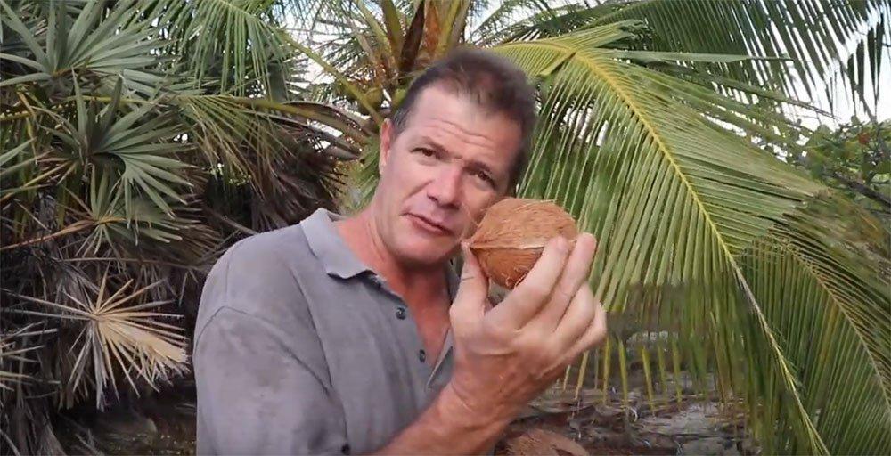 The Extraordinary Multi-Purpose Coconut Tree
